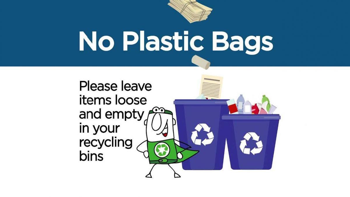 no plastic bag graphic